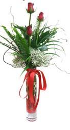 Adana çiçek gönder çiçek siparişi sitesi  3 adet kirmizi gül vazo içerisinde
