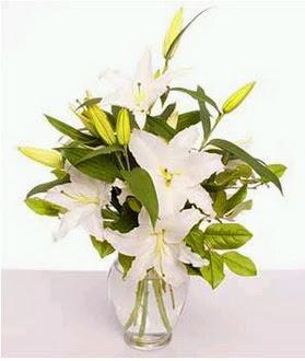 Adana çiçek yolla çiçek gönderme  2 dal cazablanca vazo çiçeği