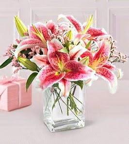 2 dal kazablanka görsel vazosu  Adana çiçek gönder çiçek siparişi sitesi