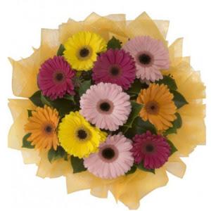 Adana çiçek yolla İnternetten çiçek siparişi  11 adet karışık gerbera çiçeği buketi