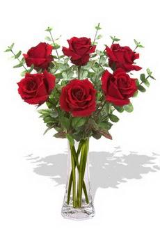 Adana çiçek gönder çiçekçi mağazası  6 kırmızı gül vazosu