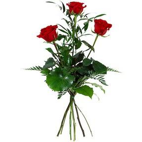 Adana çiçek siparişi uluslararası çiçek gönderme  3 adet kırmızı gülden buket