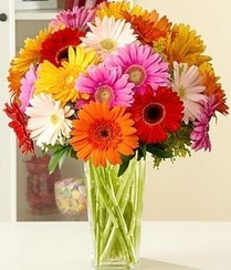 Adana çiçek siparişi çiçek servisi , çiçekçi adresleri  15 adet gerbera çiçek vazosu