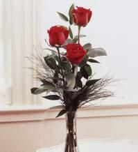 Adana çiçek gönder internetten çiçek satışı  Vazoda 3 adet güzel gül