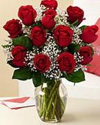 Sevgilime hediye 9 adet 1.ci kalite gül  Adana çiçek siparişi anneler günü çiçek yolla