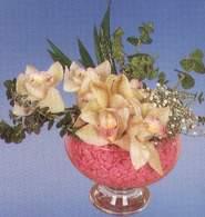 Adana çiçek siparişi çiçek mağazası , çiçekçi adresleri  Dal orkide kalite bir hediye