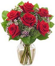 Kız arkadaşıma hediye 6 kırmızı gül  Adana çiçek siparişi internetten çiçek siparişi