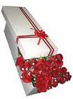 Adana çiçek yolla çiçekçi telefonları  11 adet 1.kalite magnum güller