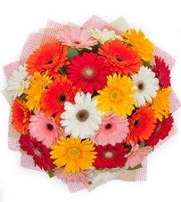 15 adet renkli gerbera buketi  Adana çiçek siparişi yurtiçi ve yurtdışı çiçek siparişi