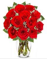 12 adet vazoda kıpkırmızı gül  Adana çiçek siparişi cicek , cicekci