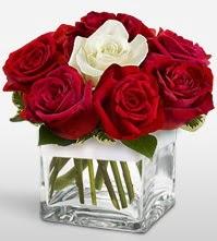 Tek aşkımsın çiçeği 8 kırmızı 1 beyaz gül  Adana çiçek siparişi uluslararası çiçek gönderme