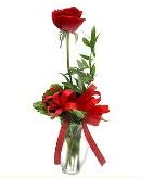 vazo içerisinde 1 adet kırmızı gül  Adana çiçek yolla çiçekçi telefonları