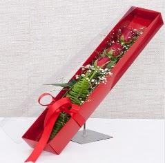 Kutu içerisinde 3 adet kırmızı gül  Adana çiçek siparişi online çiçek gönderme sipariş