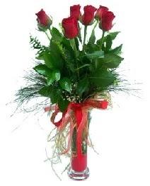 vazo içerisinde 5 kırmızı gül  Adana çiçek siparişi güvenli kaliteli hızlı çiçek