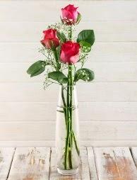Cam içerisinde 3 kırmızı gül  Adana çiçek yolla çiçek satışı