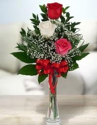 Camda 2 kırmızı 1 beyaz gül  Adana çiçek gönder ucuz çiçek gönder