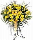 Adana çiçek siparişi yurtiçi ve yurtdışı çiçek siparişi  Sari kazablanka Ferforje