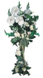 Adana çiçek siparişi çiçek mağazası , çiçekçi adresleri  antoryumlarin büyüsü özel