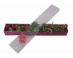 Adana çiçek siparişi anneler günü çiçek yolla   6 adet kirmizi gül kutu içinde