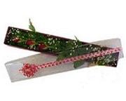Adana çiçek gönder hediye çiçek yolla  3 adet gül.kutu yaldizlidir.