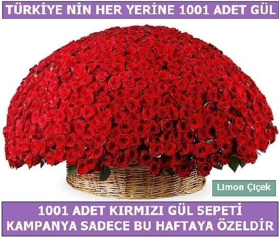 1001 Adet kırmızı gül Bu haftaya özel  Adana çiçek yolla İnternetten çiçek siparişi