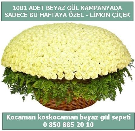1001 adet beyaz gül sepeti özel kampanyada  Adana çiçek yolla çiçek gönderme sitemiz güvenlidir