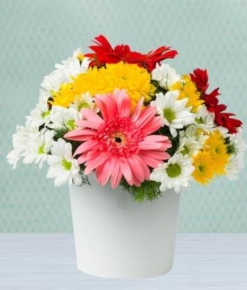 Seramik Vazoda Gelbera ve Papatya  Adana çiçek yolla çiçek gönderme