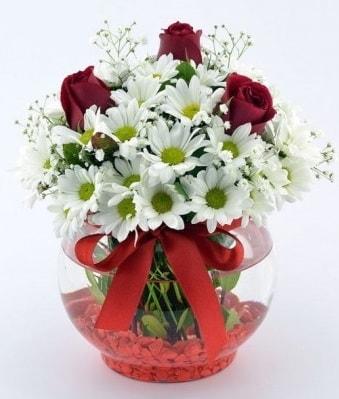 Fanusta 3 Gül ve Papatya  Adana çiçek gönder internetten çiçek satışı
