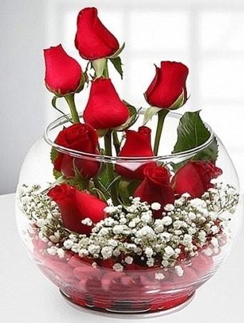 Kırmızı Mutluluk fanusta 9 kırmızı gül  Adana çiçek gönder çiçek siparişi sitesi