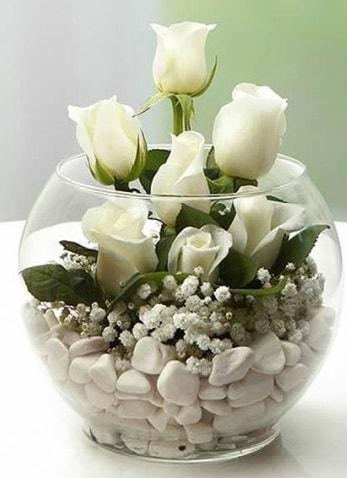 Beyaz Mutluluk 9 beyaz gül fanusta  Adana çiçek gönder çiçek siparişi sitesi