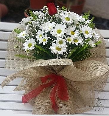Papatya 1 adet kırmızı gül buketi  Adana çiçek siparişi çiçekçiler