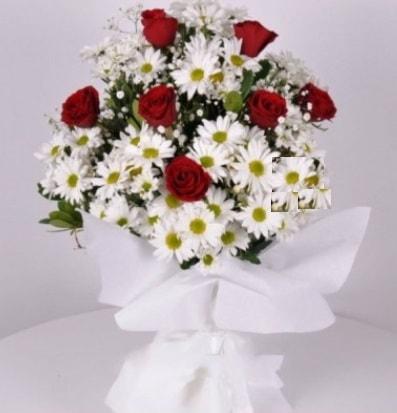 7 adet kırmızı gül ve papatyalar krizantem  Adana çiçek gönder internetten çiçek satışı