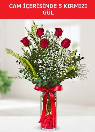 Cam içerisinde 5 adet kırmızı gül  Adana çiçek gönder çiçek siparişi sitesi