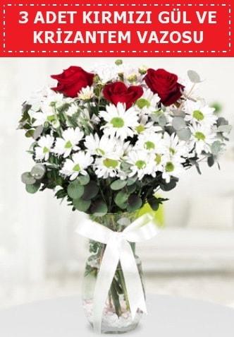 3 kırmızı gül ve camda krizantem çiçekleri  Adana çiçek yolla çiçek gönderme