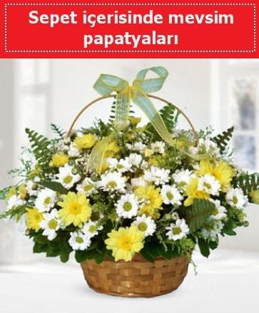 Sepet içerisinde mevsim papatyaları  Adana çiçek gönder ucuz çiçek gönder