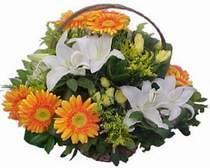Adana çiçek siparişi online çiçekçi , çiçek siparişi  sepet modeli Gerbera kazablanka sepet